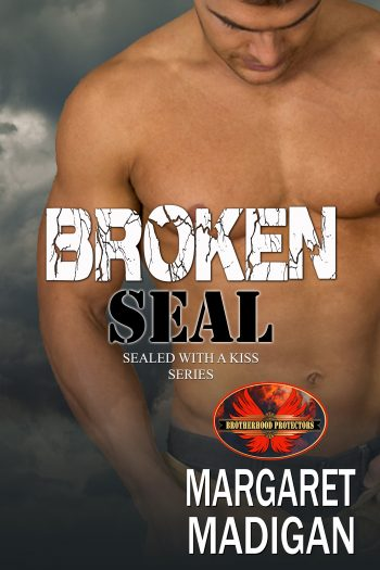 broken-seal-cover-2.jpg