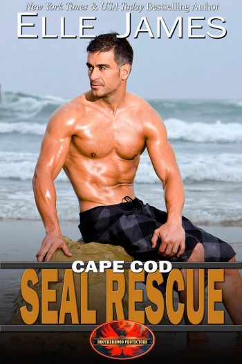 Cape Cod SEAL Rescue