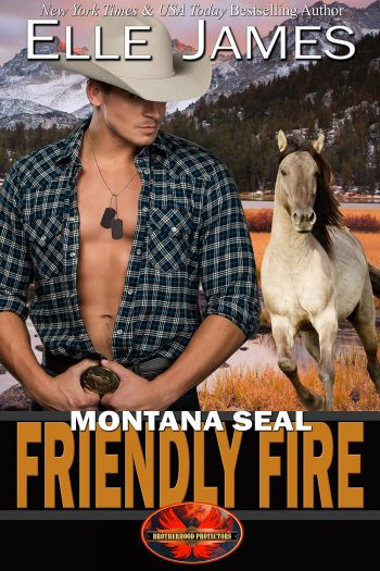 Montana SEAL Friendly Fire